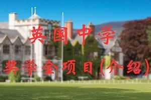 沈阳市英国中学奖学金项目介绍
